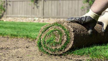 Landscape Gardening Turf Elimbah Brisbane
